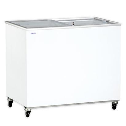 Congelatore 300 litri FVS 300