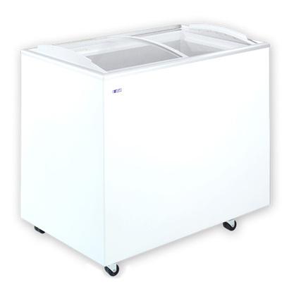 Congelatore  300litri FVSC