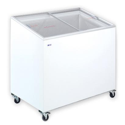 Congelatore 300litri FIVS