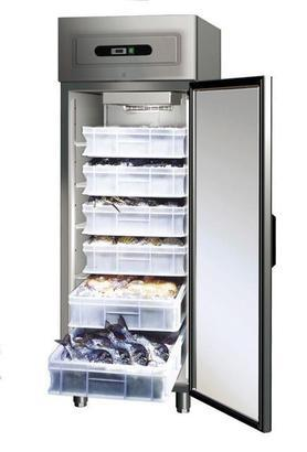 Armadio frigo GN 600 TN FISH